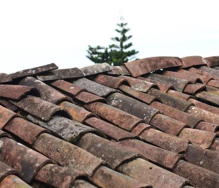 Old and dirty brown roof shingles that are in desperate need of repairs.